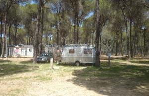 Campsite Village Doñarrayan Park