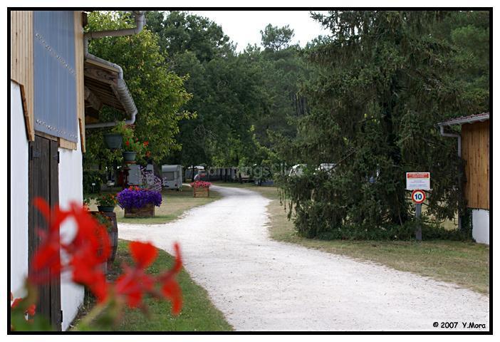 Campsite De Bilos