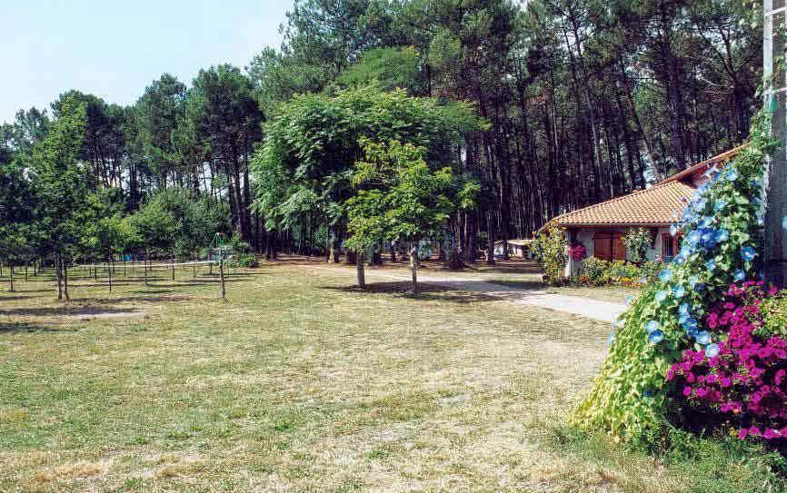 Campsite La Téouleyre