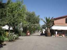Campsite Navarrete