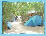 Campsite La Cle Des Champs