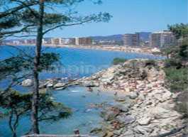 Campsite Pla De La Torre
