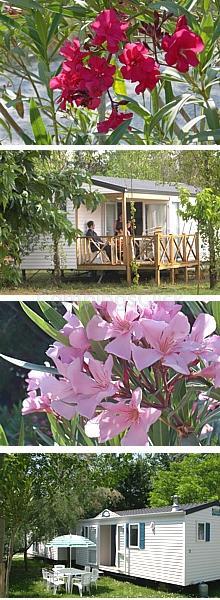 Campsite Fleur de Camargue