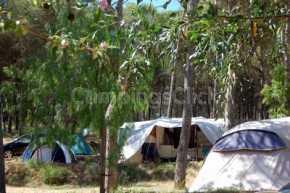 Campsite Neus